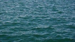 Sulla superficie del rigonfiamento dell'acqua e del giro del movimento lento della macchina fotografica video d archivio