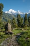 Sulla traccia vicino a Chainabatthi, il Nepal che guarda verso Annapurna S Immagine Stock