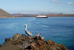 Sullivan Bay avec le bateau de croisière et le pélican, Galapagos photos stock
