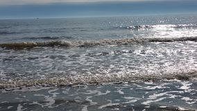 Sullivan Island Beach Fotografia Stock Libera da Diritti