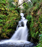 Sullivan's cascade. Just out side killarney In Co. Kerry Ireland royalty free stock photos