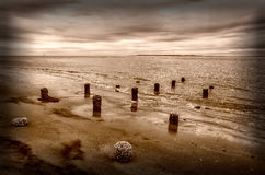 Sullivans Island shoreline Stock Photography