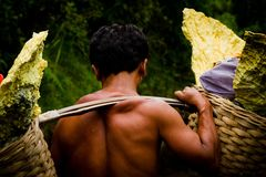 A sulpher miner of Ijen volcano, Ijen, Indonesia Stock Photos