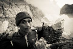A sulpher miner of Ijen volcano, Ijen, Indonesia Royalty Free Stock Photo