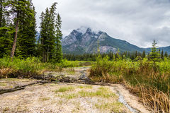 Sulphur area of Banff Stock Images