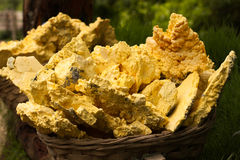 Sulphur in a bamboo basket that carry by a man from the crater. Sulphur place in a bamboo basket by the workers to carry from the Ijen Crater, East Java Royalty Free Stock Photo