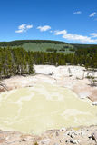 Sulphur Caldron Yellowstone. Sulphur Caldron, Yellowstone National Park, is at the edge of one of the most active areas of the parks buried volcano, filling the royalty free stock photo
