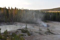 Sulphur Caldron at Yellowstone National Park. In the USA royalty free stock photos