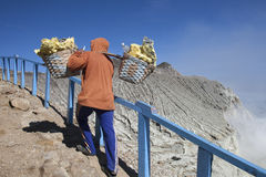 Sulphur carriers at Ijen Royalty Free Stock Photography