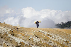 Sulphur carriers at Ijen Royalty Free Stock Photo