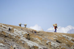 Sulphur carriers at Ijen Royalty Free Stock Images