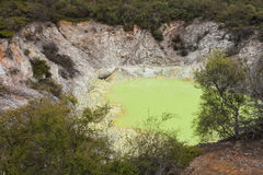 Sulphur crater in Waiotapu Stock Image