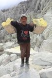 Sulphur miner Stock Photography