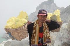 Sulphur miner Stock Photos