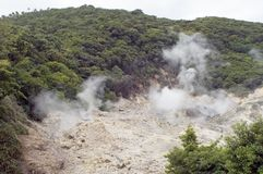 Sulphur vents. Smelly stick of rotten eggs of the smell of National park sulphur vents at the La Soufriere Sulphur Spring near the town of La Soufriere in st stock images