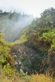 Sulphur vents in Volcanoes National Park, Big Island of Hawaii Royalty Free Stock Photo