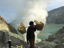 Sulphurgruvarbetare på den Ijen krater, Indonesien Royaltyfria Foton