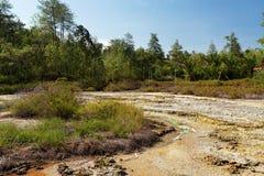 Sulphurous lakes near Manado, Indonesia. Original name: Wisata Hutan Pinus Dan Pemandian Air Panas Stock Images