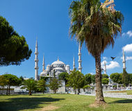 Sultan Ahmed Mosque  (Blue Mosque), Istanbul Royalty Free Stock Image