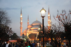Sultan Ahmed Mosque. The Sultan Ahmed Mosque and the park in Istanbul at the evening Royalty Free Stock Photos