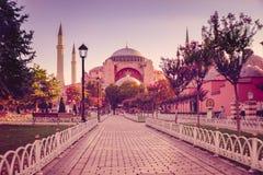 Sultan Ahmet camii Royaltyfria Bilder