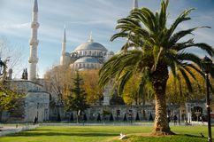 Sultan Ahmet Camii named Blue Mosque, Istanbul, Turkey stock images