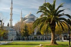 Sultan Ahmet Camii namngav den blåa moskén, Istanbul, Turkiet arkivbilder
