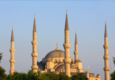 Sultan ahmet minaret. Main mosque of istanbul - sultan ahmet (blue mosque) at early ev Royalty Free Stock Photo