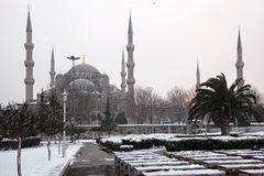Sultan Ahmet Mosque at Snowy Day Royalty Free Stock Images