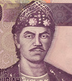 Sultan Mahmud Badaruddin II Stock Photos
