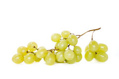 Sultana grape. Branch of sweet green grapes isolated Royalty Free Stock Image