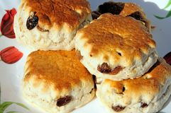 Sultana Scones. stock photos