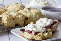 Sultana Scones with Jam and Cream on the Table royalty free stock image