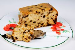 Sultana sponge cake. Stock Images
