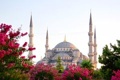 Sultanahmet, Blue Mosque. Istanbul Sultanahmet camii most famous as Blue Mosque Royalty Free Stock Photography