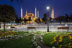 Sultanahmet Blue Mosque at night Stock Photography