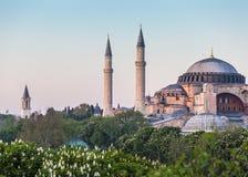 Sultanahmet Camii/蓝色清真寺,伊斯坦布尔,土耳其 免版税库存图片