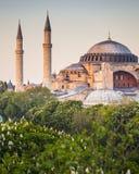 Sultanahmet Camii/蓝色清真寺,伊斯坦布尔,土耳其 图库摄影
