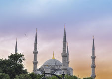 Sultanahmet Camii  - Blue mosque, Istanbul Royalty Free Stock Photography