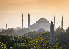 Sultanahmet Camii/moschea blu, Costantinopoli, Turchia Fotografie Stock Libere da Diritti