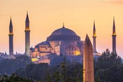 Sultanahmet Camii/mosquée bleue, Istanbul, Turquie Photos stock