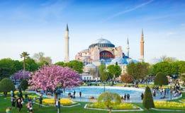 Free Sultanahmet District In Istanbul, Turkey. Walking People, Green Grass Fields And Fountain Near Famous Landmark Hagia Sophia. Stock Image - 165637501