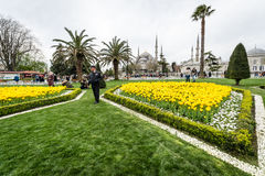 Sultanahmet neighborhood of Fatih, Istanbul, Turkey Royalty Free Stock Image