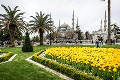 Sultanahmet neighborhood of Fatih, Istanbul, Turkey Stock Photography