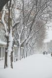 Sultanahmet Park during a snow storm. In winter time in Istanbul ,Turkey Royalty Free Stock Photo