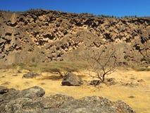 Sultanate of Oman, Dhofar, near Salalah, wadi Darbat Royalty Free Stock Photo