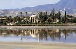 Sultano Tekke di Hala immagini stock libere da diritti