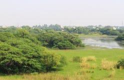Sultanpur nationalpark Arkivbild