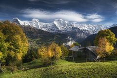 Sulwald Stock Photography