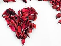 Sumário com as pétalas vermelhas secadas no fundo branco Fotos de Stock